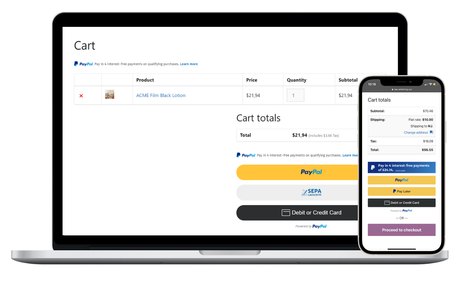 PayPal Complete Payments mockup